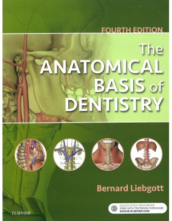 The Anatomical Basis of...