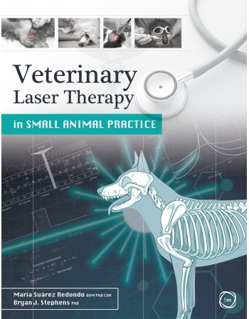 Veterinary Laser Therapy in...