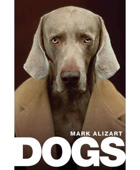 Alizart Dogs: A Philosophical Guide to Our Best Friends